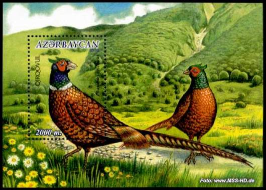Stamp Issue Azerbaijan: Pheasant