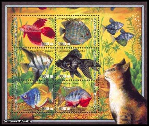 Briefmarken-Ausgabe Aserbaidschan: Aquarium-Fische